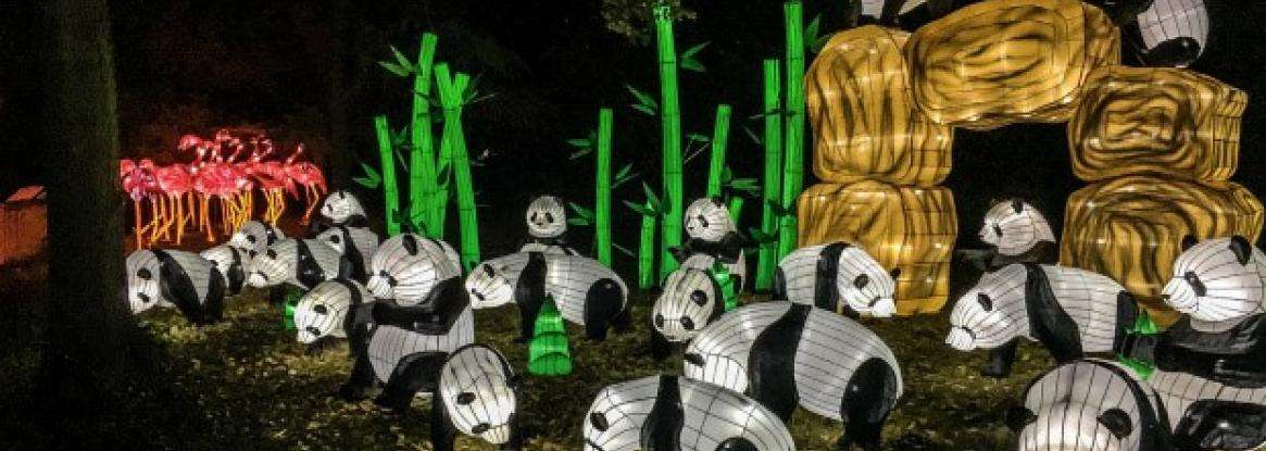 1ST ANNUAL FESTIVAL OF LIGHTS AT THE JARDIN DES PLANTES IN PARIS